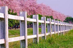 Ein Einen Garten Gehort Ein Zaun Ladeo De